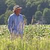 Yvon Leblanc marche dans un pré à hautes herbes.