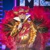 Il est déguisé en Elton John avec un habit doré, des plumes et de grosses lunettes en forme de cœur.