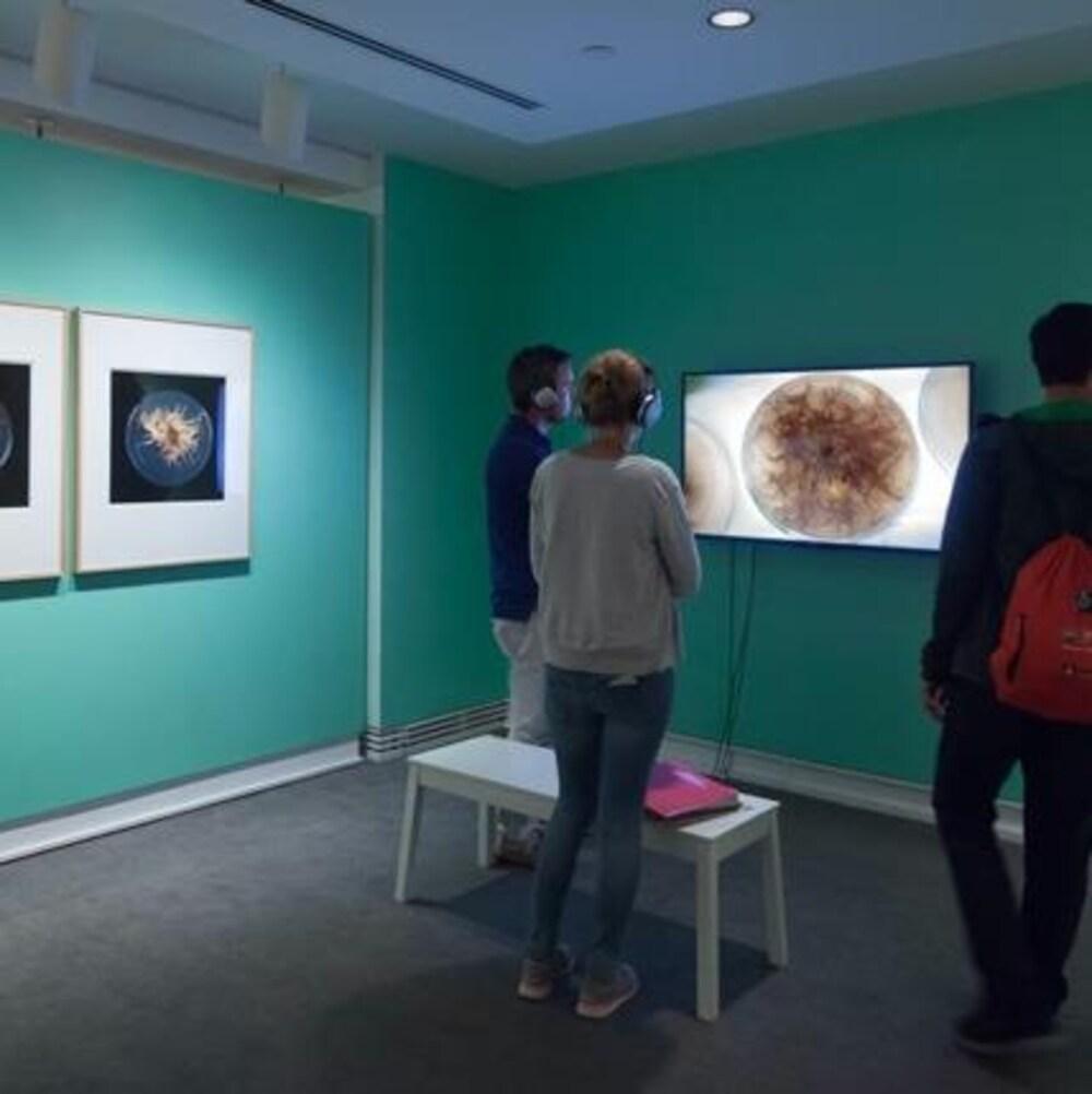 Des gens debout observent des vidéos en portant des écouteurs dans une salle d'exposition.