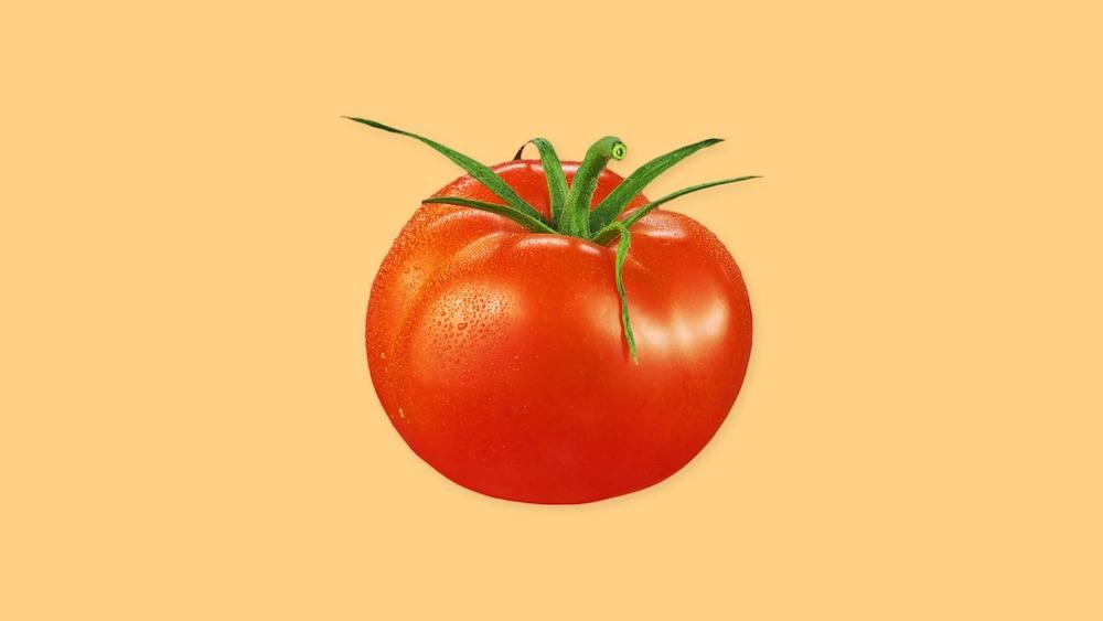Une tomate entière.