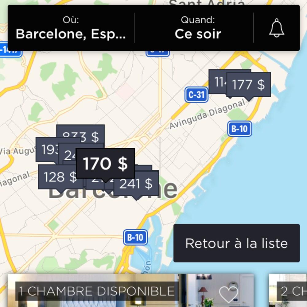 Capture d'écran de l'affichage des résultats de recherche sous forme de carte.
