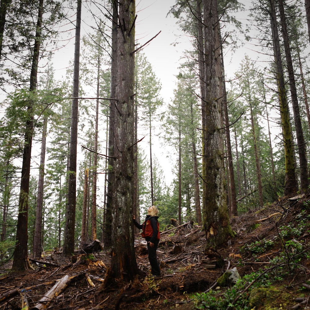 Une femme devant un arbre