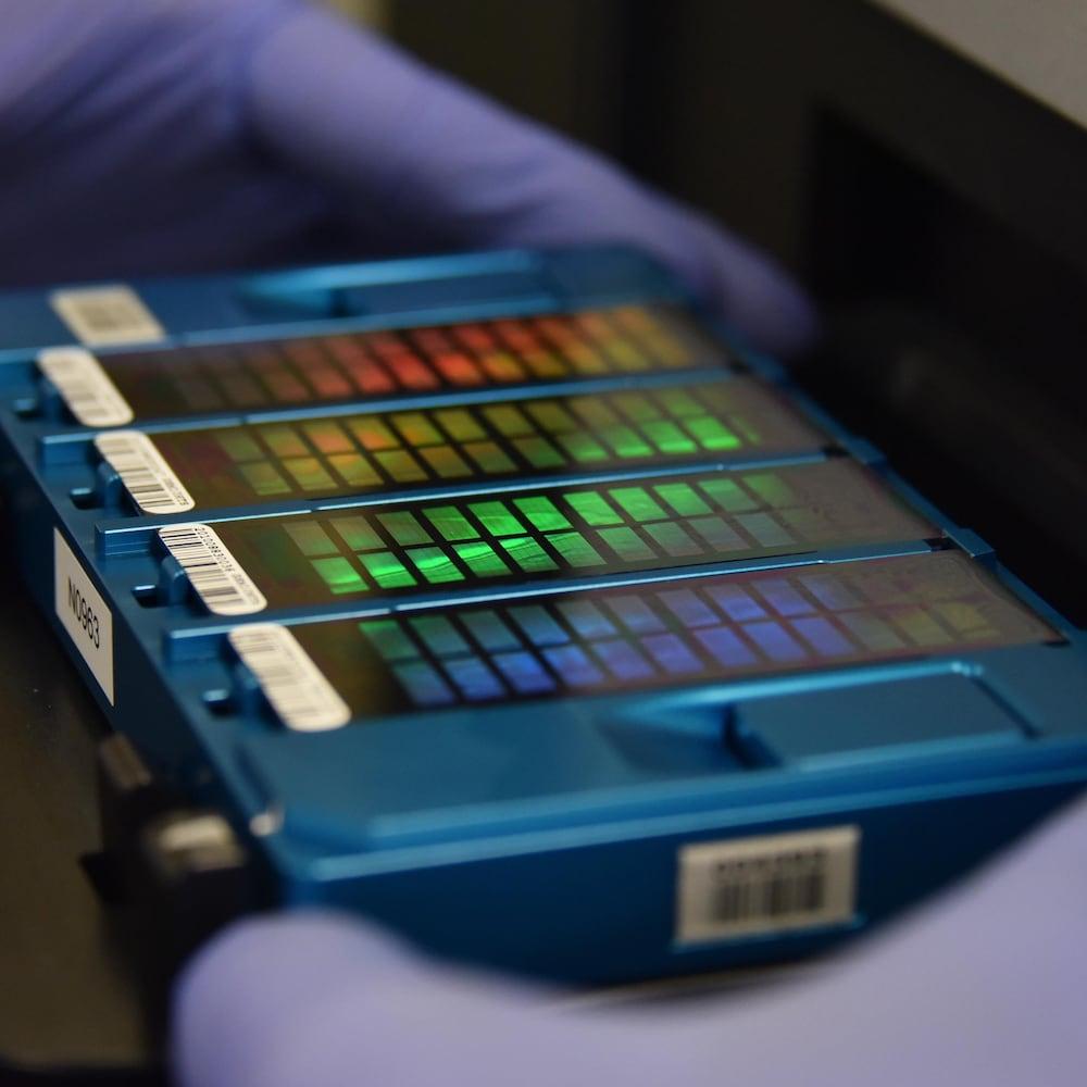 Une matrice contenant des informations sur l'ADN.