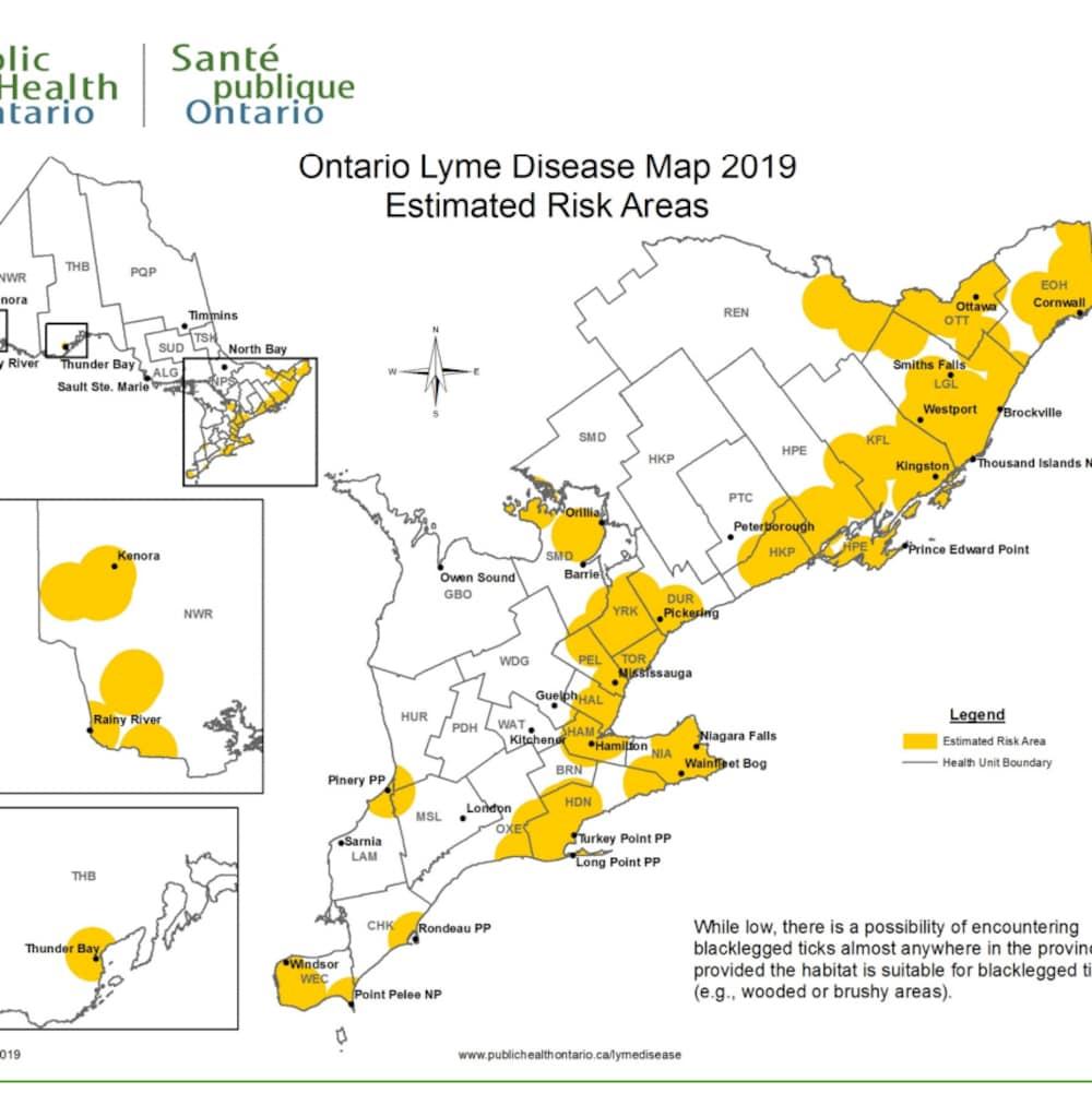 Carte de l'Ontario, des secteurs apparaissent en jaune