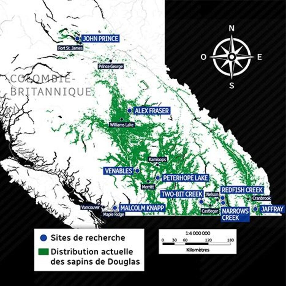 Carte de la Colombie-Britannique avec des zones vertes représentant les sapins de Douglas et des marqueurs identifiant les sites de recherche.
