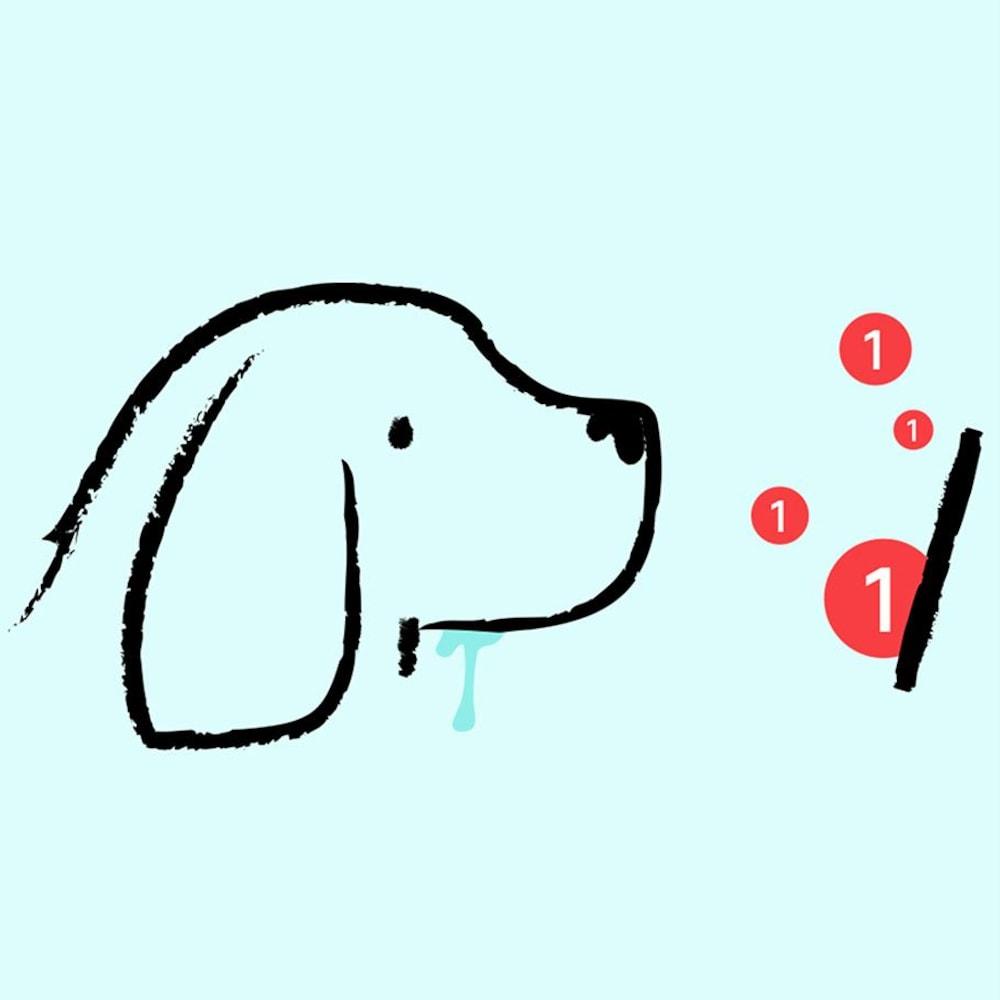 Un chien salive en regardant un écran où apparaissent des pastilles rouges de notifications.