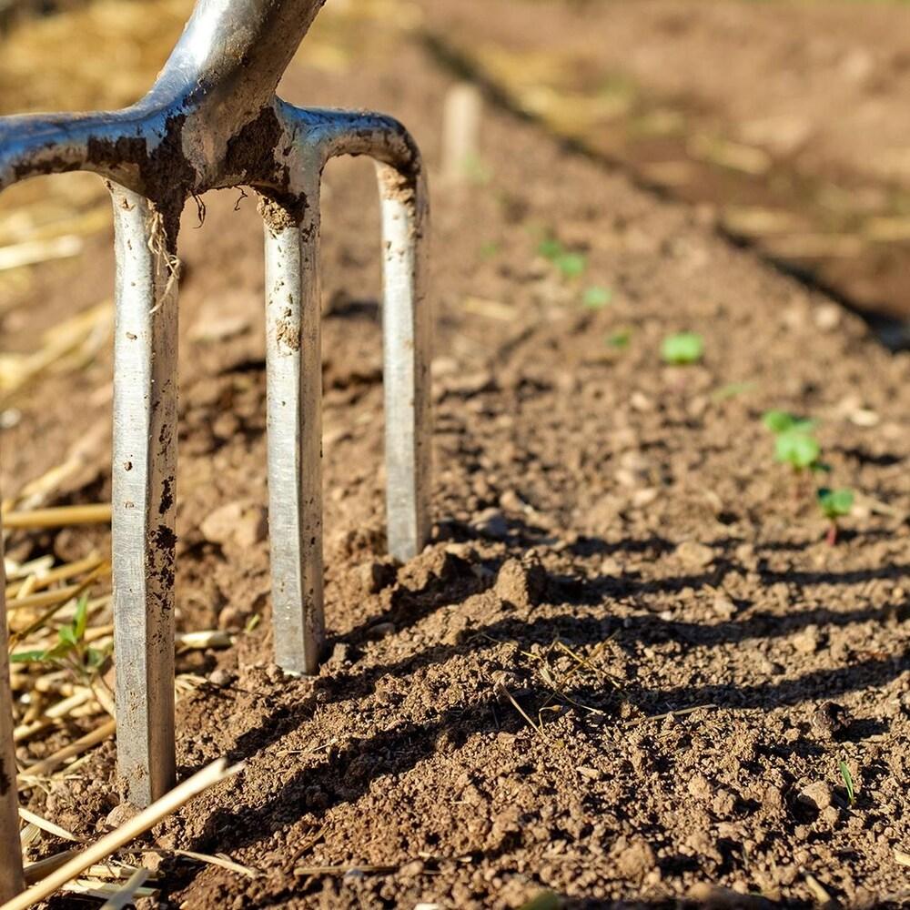 Une fourche plantée dans la terre.