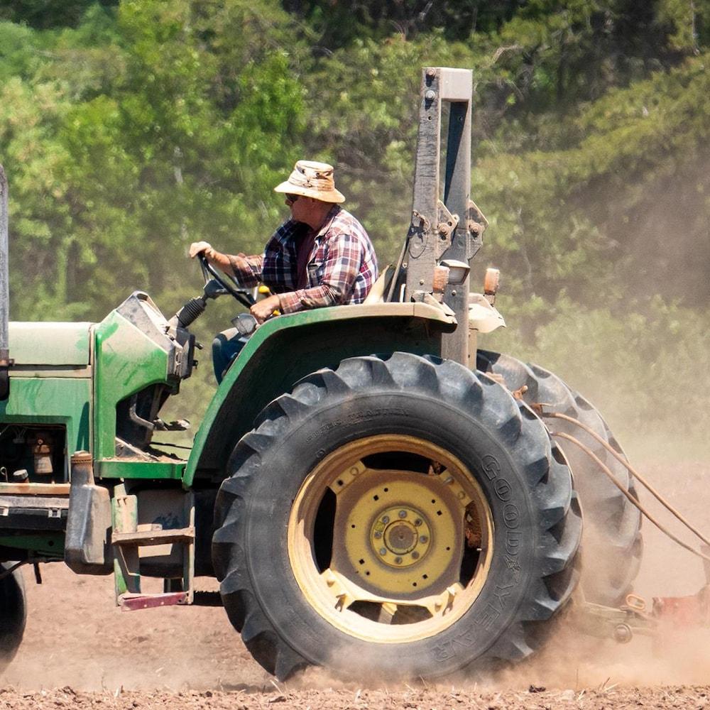 Un fermier sème de l'avoine sur sa ferme à Bassriver Point au Nouveau-Brunswick.