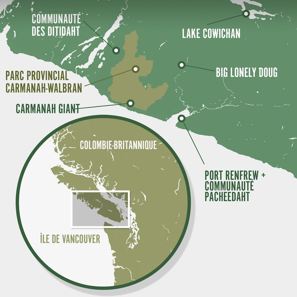 Carte identifiant les principaux lieux : Big Lonely Doug, Cheewhat Giant, Carmanah Giant, Port Renfrew, communauté des Ditidaht, parc provincial Carmanah-Walbran et Lake Cowichan.