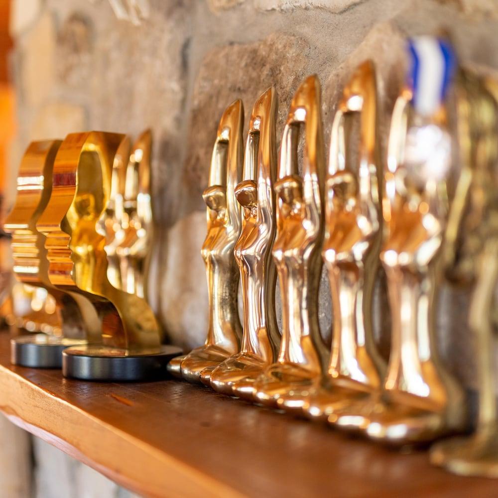 Des trophées Félix et Gémeaux sur le manteau de la cheminée.