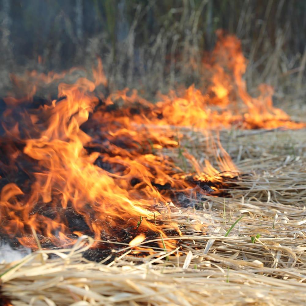 Le feu de forêt en bordure de Prince Albert, en Saskatchewan, le 18 mai 2021.