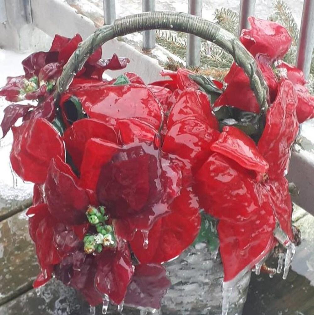 La glace recouvre une sculpture en forme de poinsettia.