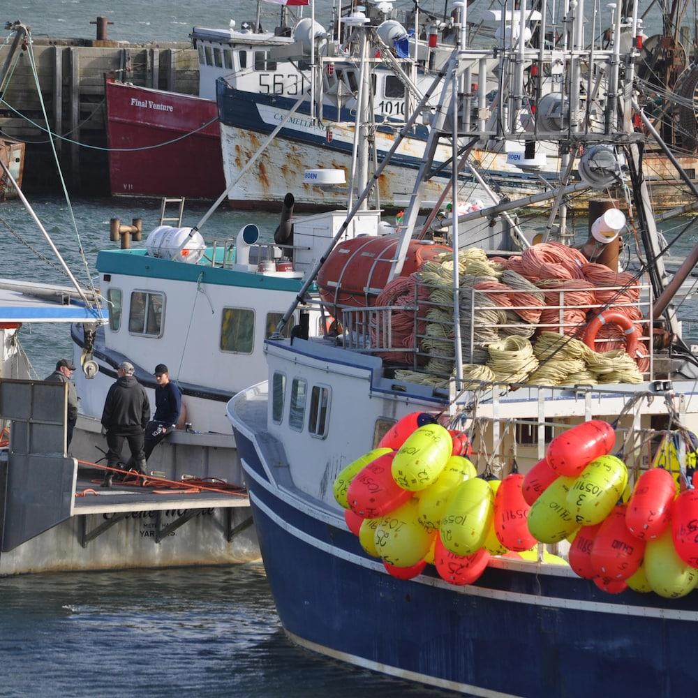 Des bateaux de pêches.