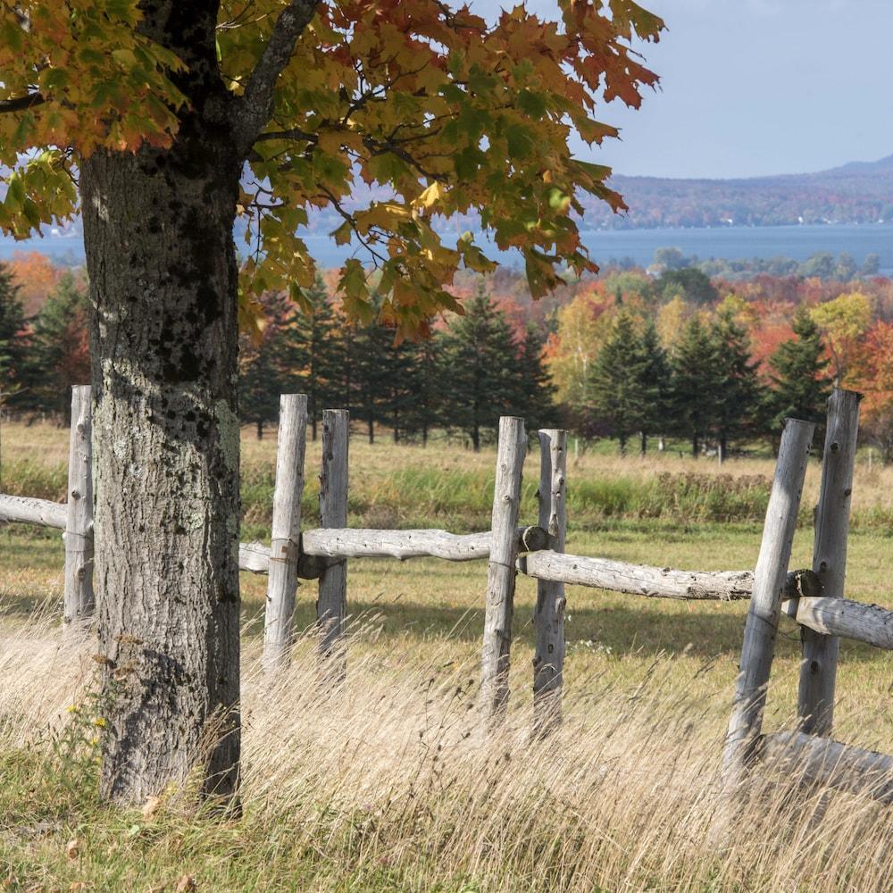 Une clôture le long d'un champ.