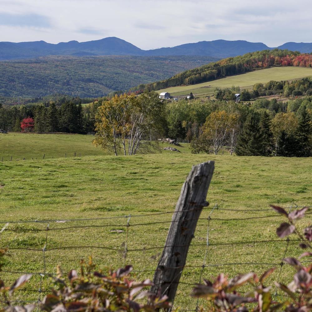 Des champs en montagnes.