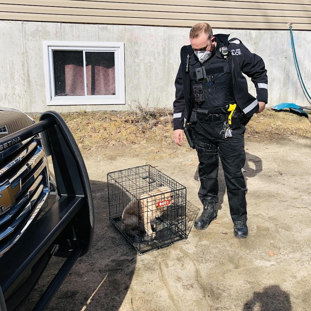 Shawn Buckshot-Maurice récupère un petit chien qui s'est égaré. Il est placé dans une cage.
