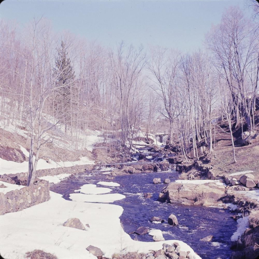 Rivière l'Assomption en hiver.