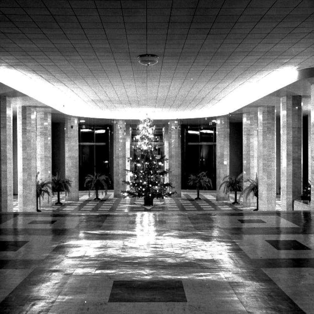 Photographie en noir et blanc d'un hall d'entrée avec un sapin de Noël et de petites plantes d'intérieur.