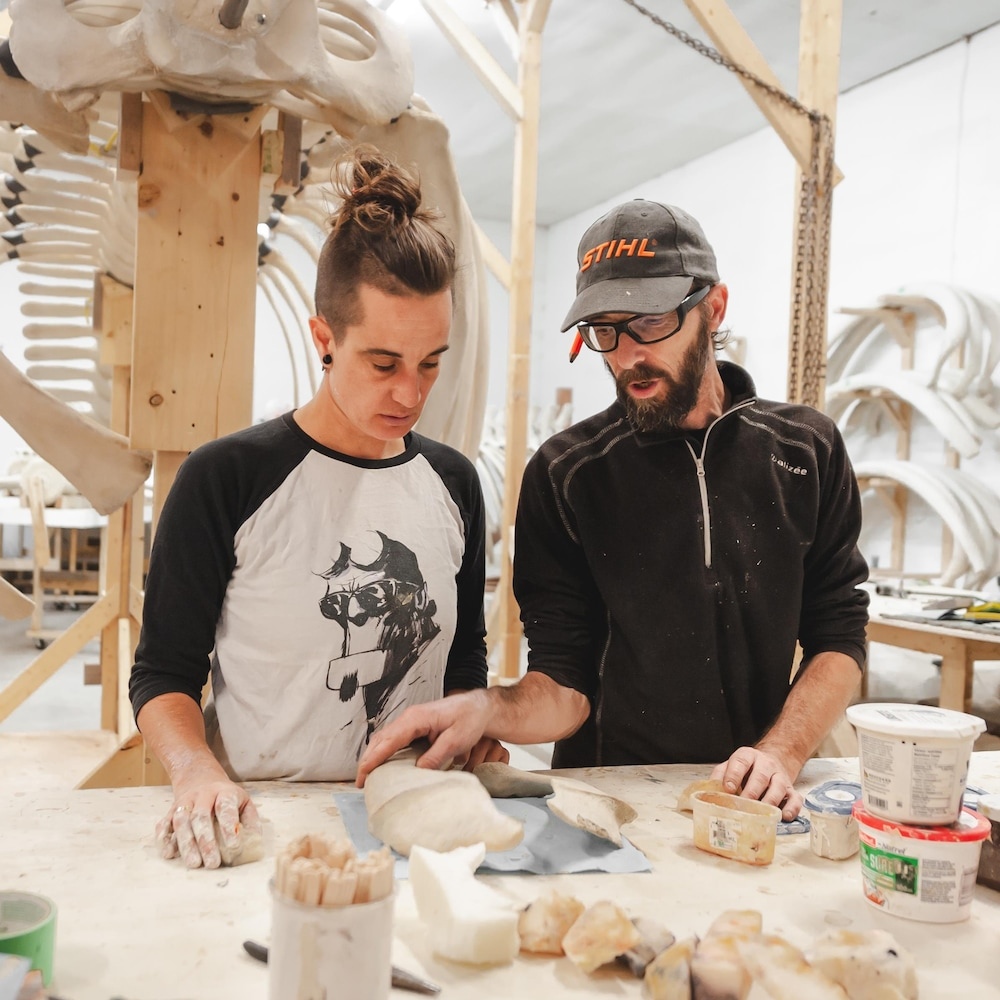 Deux travailleurs du GREMM discutent autour de deux morceaux de squelettes qu'ils retouches à l'aide de plâtre.