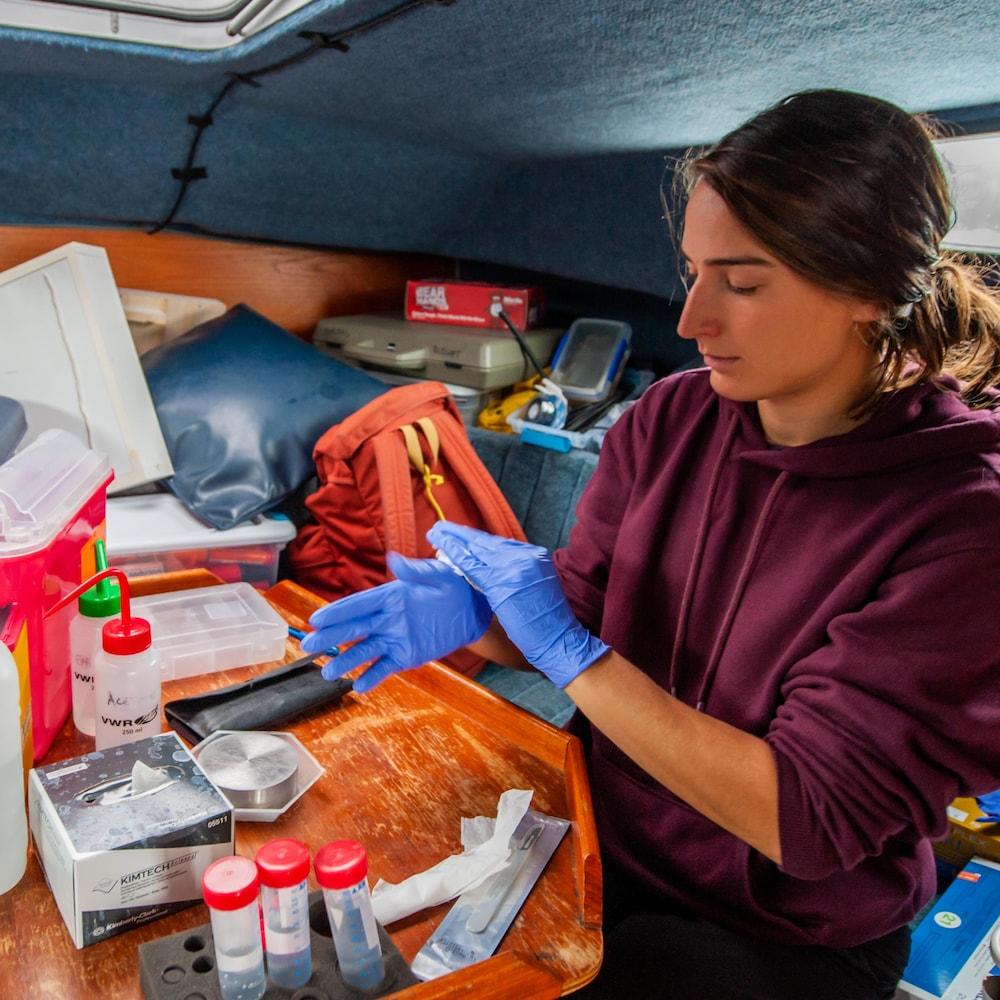 Une des employées du GREMM se prépare à faire des analyses à bord du Bleuvet.