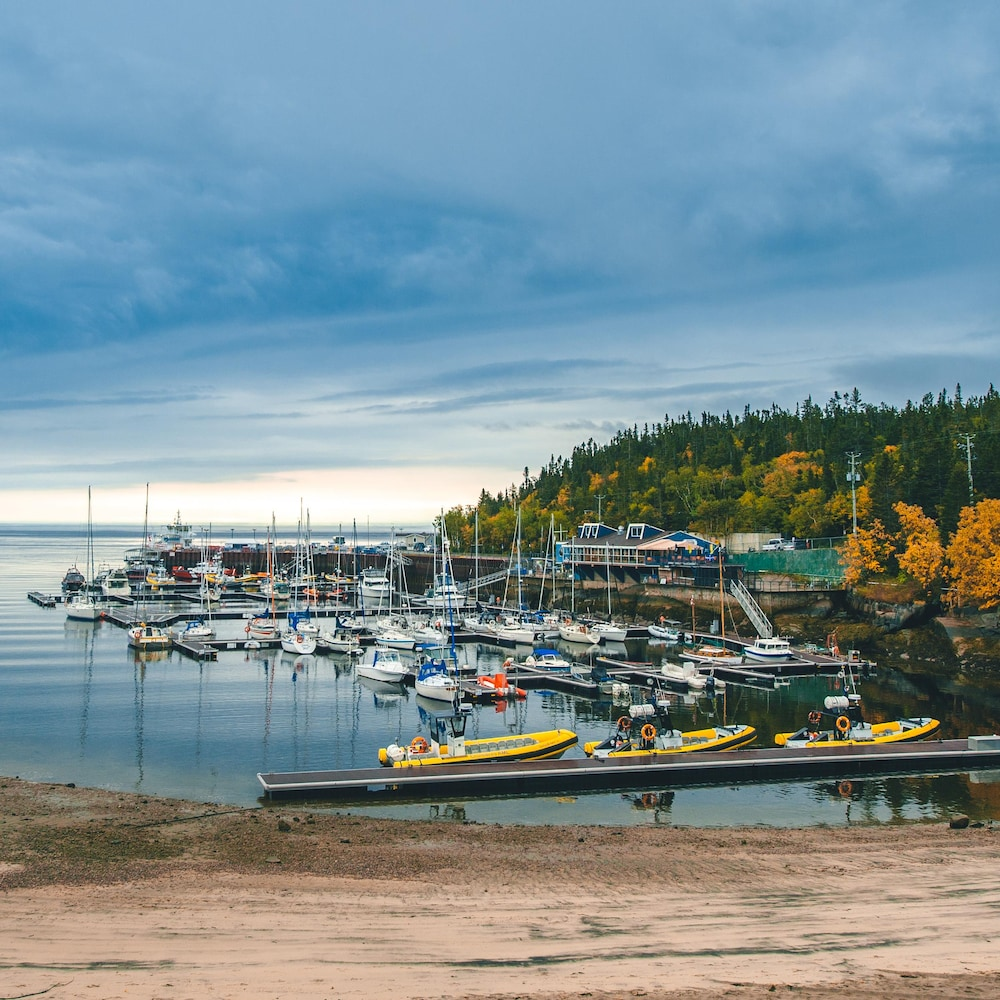 La marina de Tadoussac contient une vingtaine d'embarcations diverses.