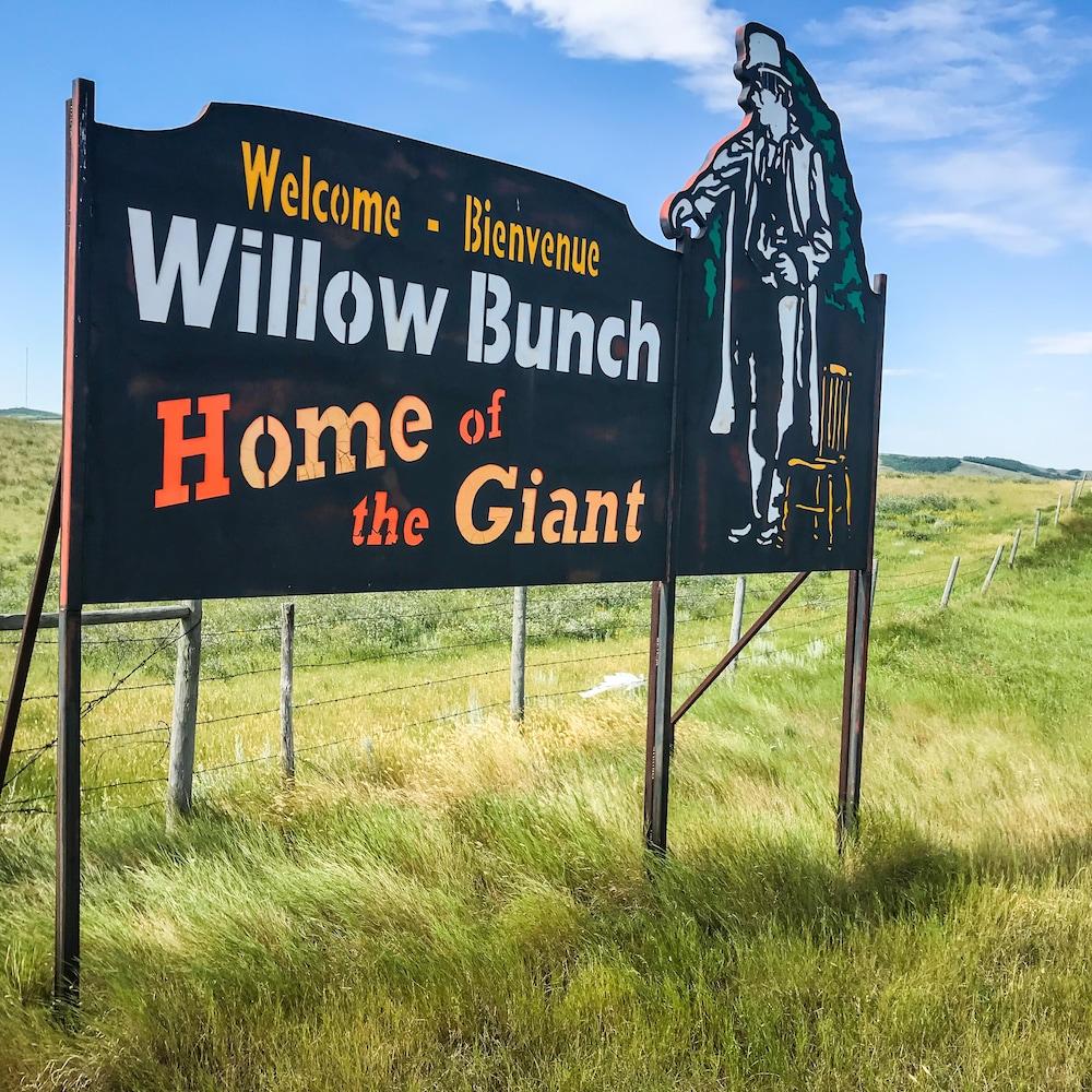 À l'entrée de la ville, deux des trois pancartes d'accueil servent à interpeller les visiteurs rapidement : « Willow Bunch, home of the Giant ».