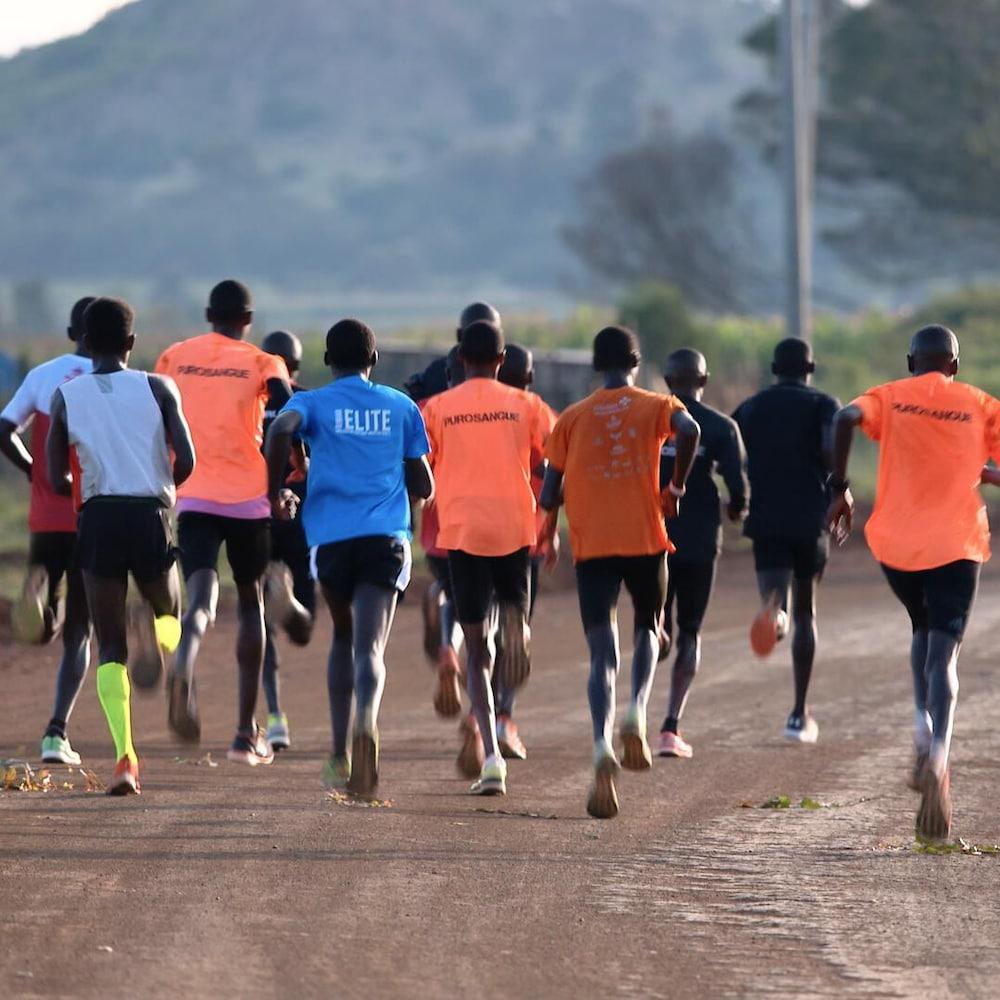Des coureurs durant une séance de fartlek, un entraînement par intervalles où les athlètes alternent sans arrêt entre jogging et sprint.