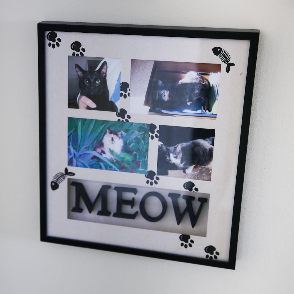 Un cadre décoratif sur un mur avec plusieurs photos de chats.