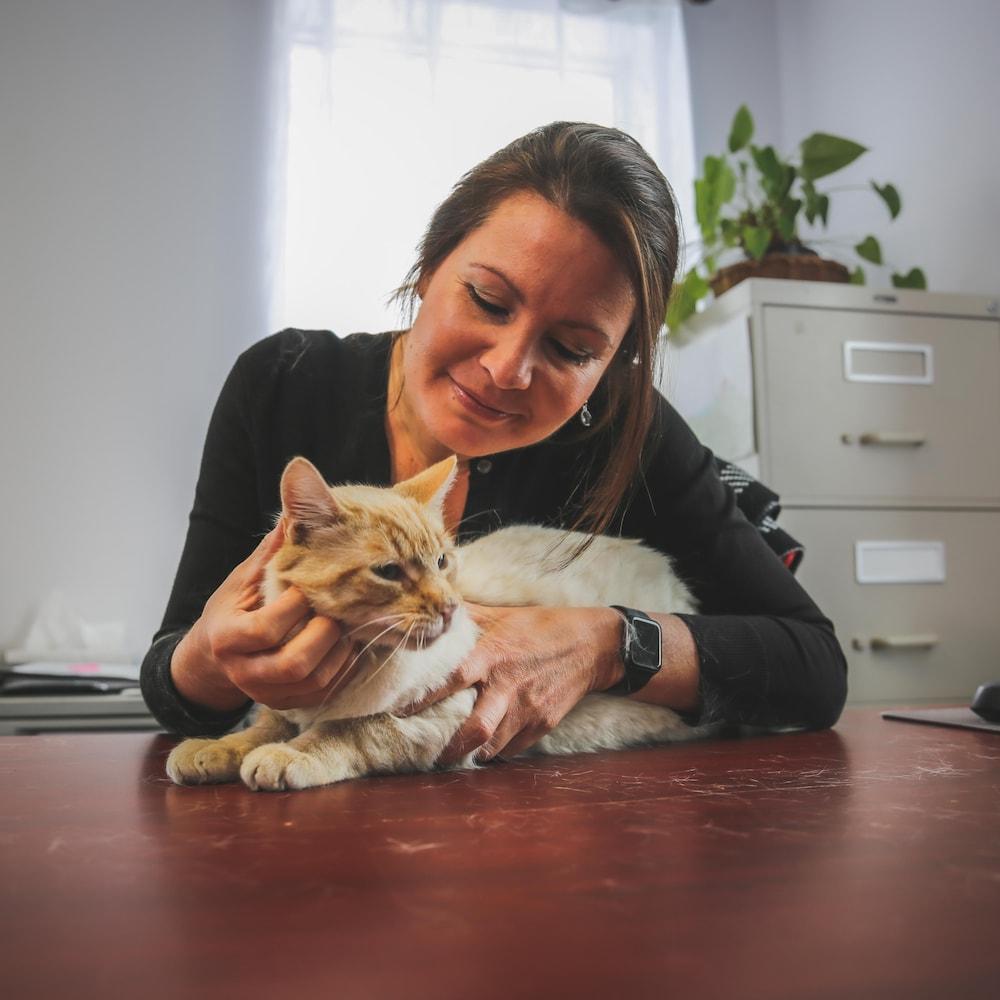 Une femme qui caresse un chat sur un bureau.
