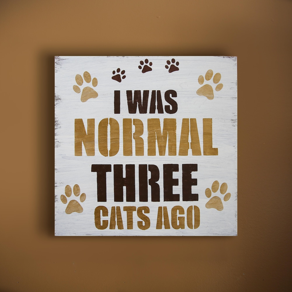 Un cadre décoratif avec la mention «J'étais normal il y a trois chats » en anglais.
