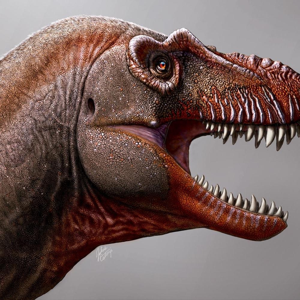 Représentation d'un tyrannosaure la gueule ouverte. On peut voir une rangée de dents acérées. Des lignes verticales comme des cicatrices ponctuent sa mâchoire.