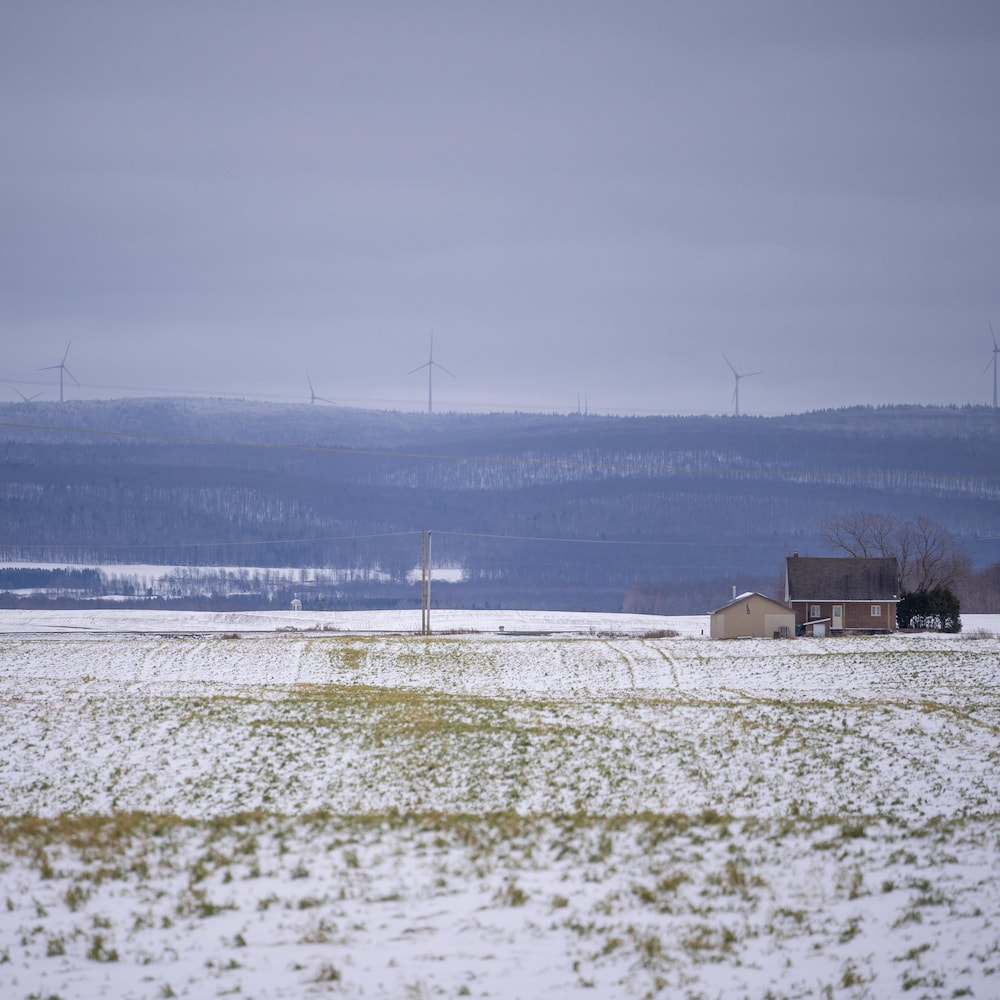 Un paysage rural avec des éoliennes au loin.
