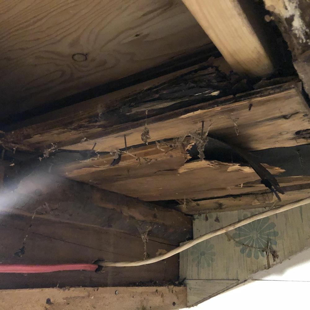 Plafond en bois délabré