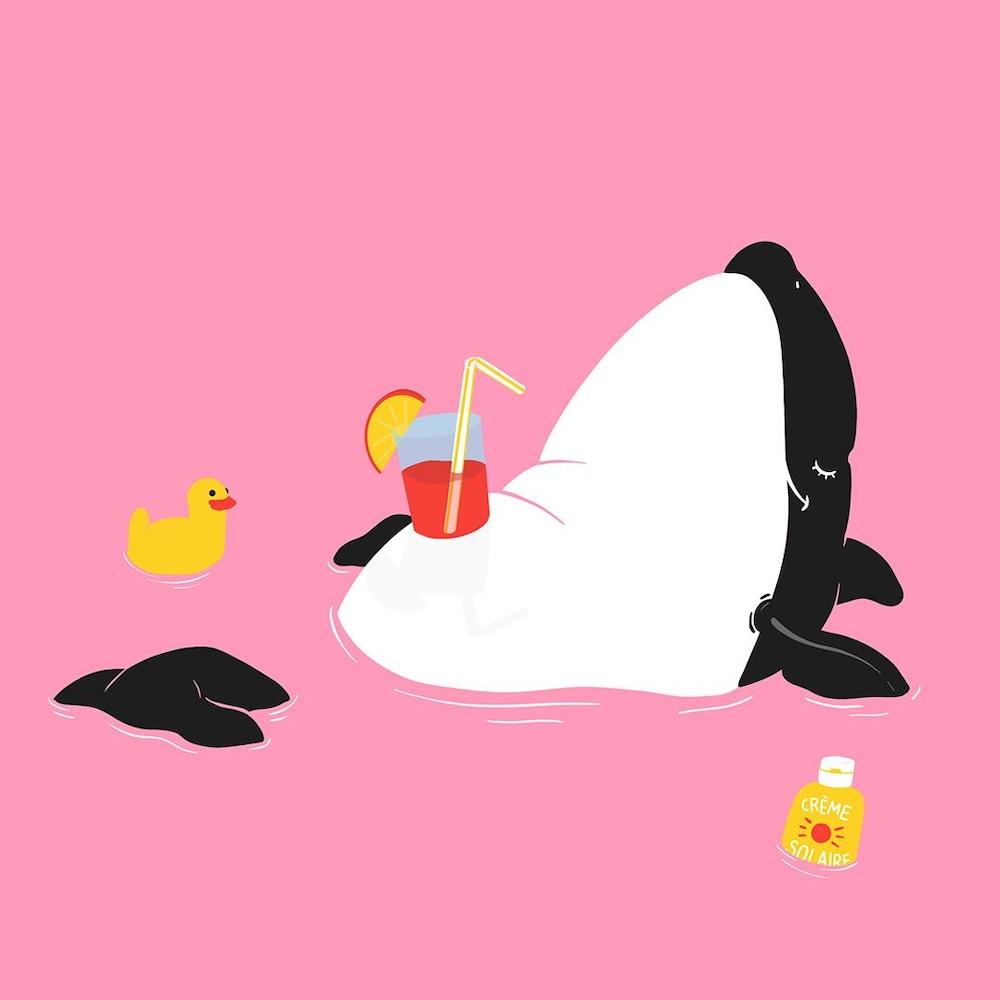 Un dessin d'épaulard qui se laisse flotter sur le dos dans l'eau, avec un verre de jus fruité bien installé sur son ventre. On le croirait à la plage.