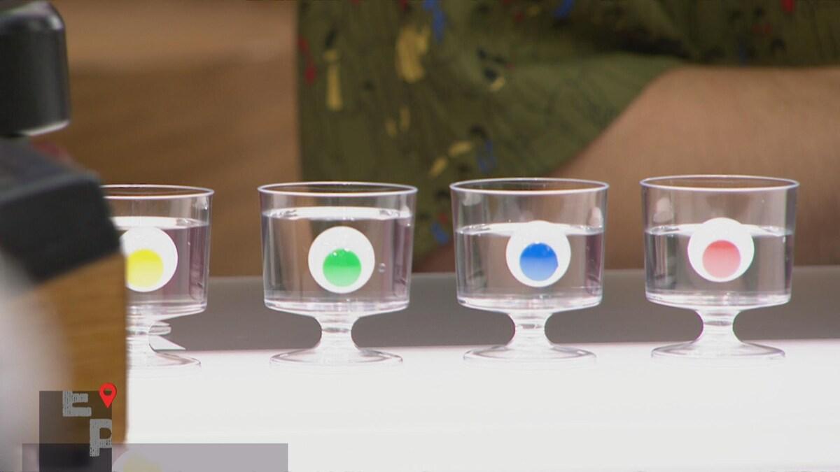 Quatre verres d'eau alignés sont identifiés avec des autocollants de couleurs différentes.