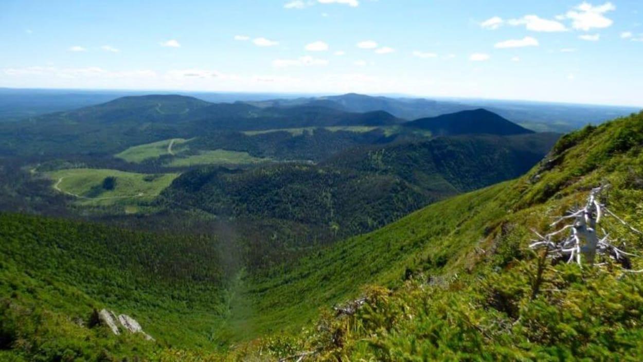 La réserve faunique de Matane