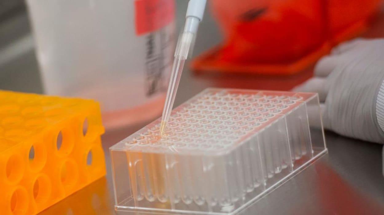 Londres accuse la Russie de vouloir voler des données sur un vaccin