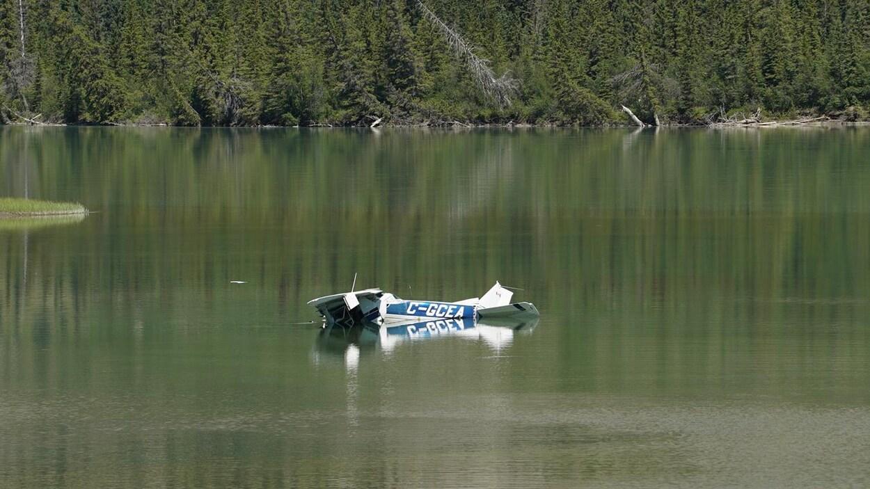 La carcasse d'un avion gît dans peu d'eau, près d'une forêt.