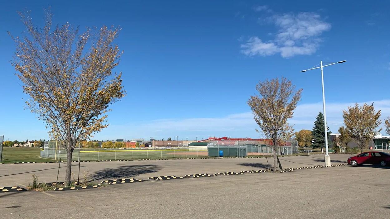 Des arbres bordent le stationnement d'un parc.