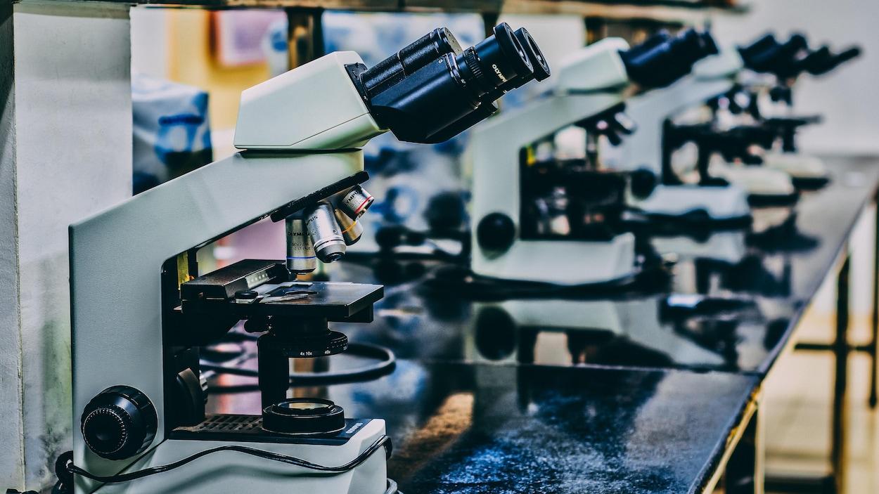 Des outils de laboratoire.