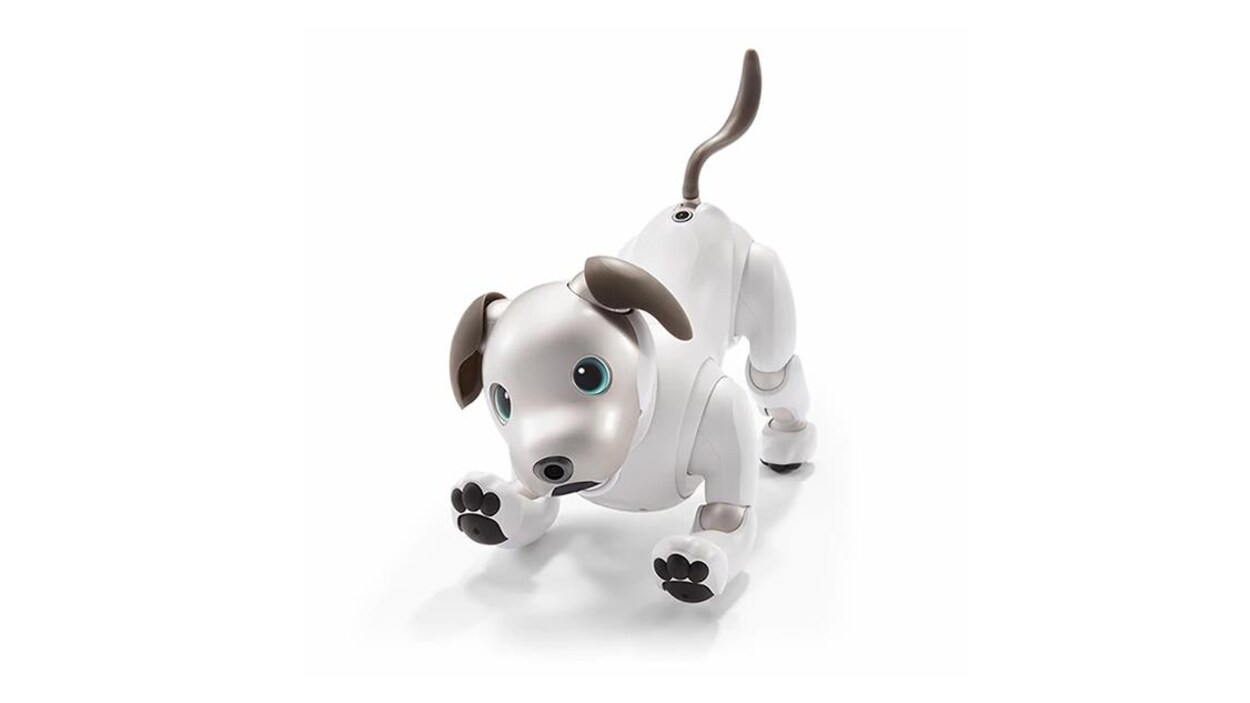 sony ressuscite son chien robot aibo ici radio. Black Bedroom Furniture Sets. Home Design Ideas