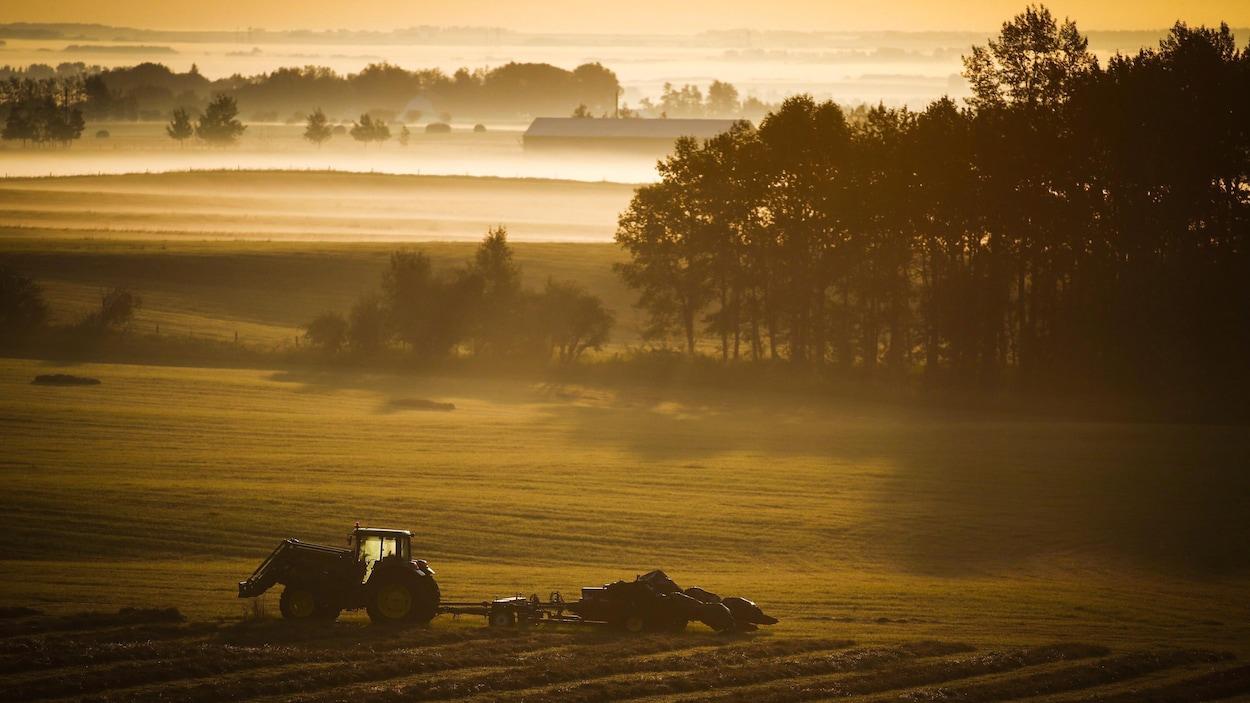 Un tracteur dans un champ lors du lever du soleil en Alberta, en août 2016.