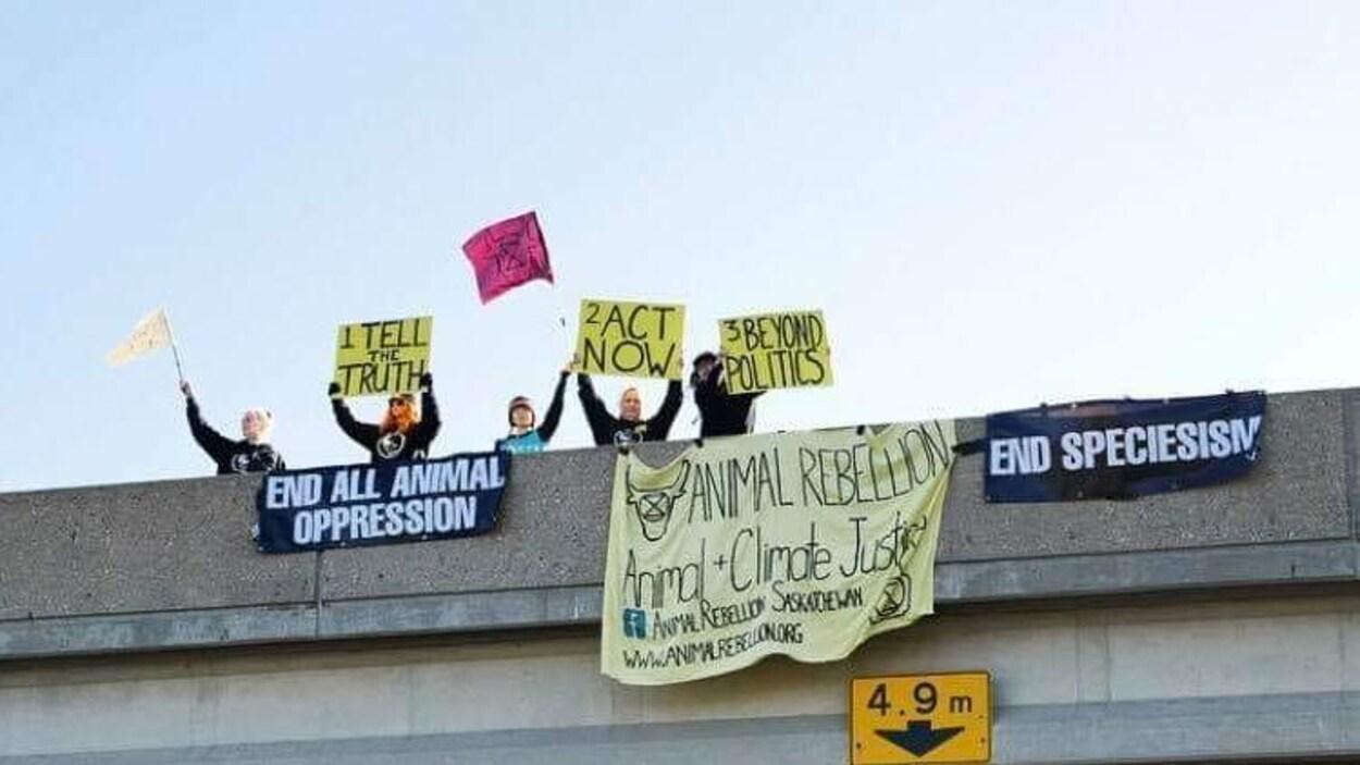 Quatre manifestants tiennent des pancartes par-dessus du pont.