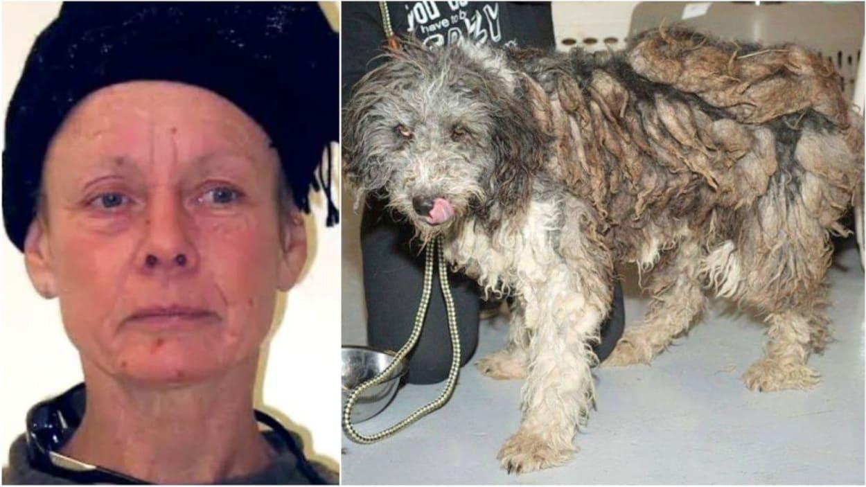 Une photo d'une femme qui porte un chapeau et celle d'un chien maltraité.
