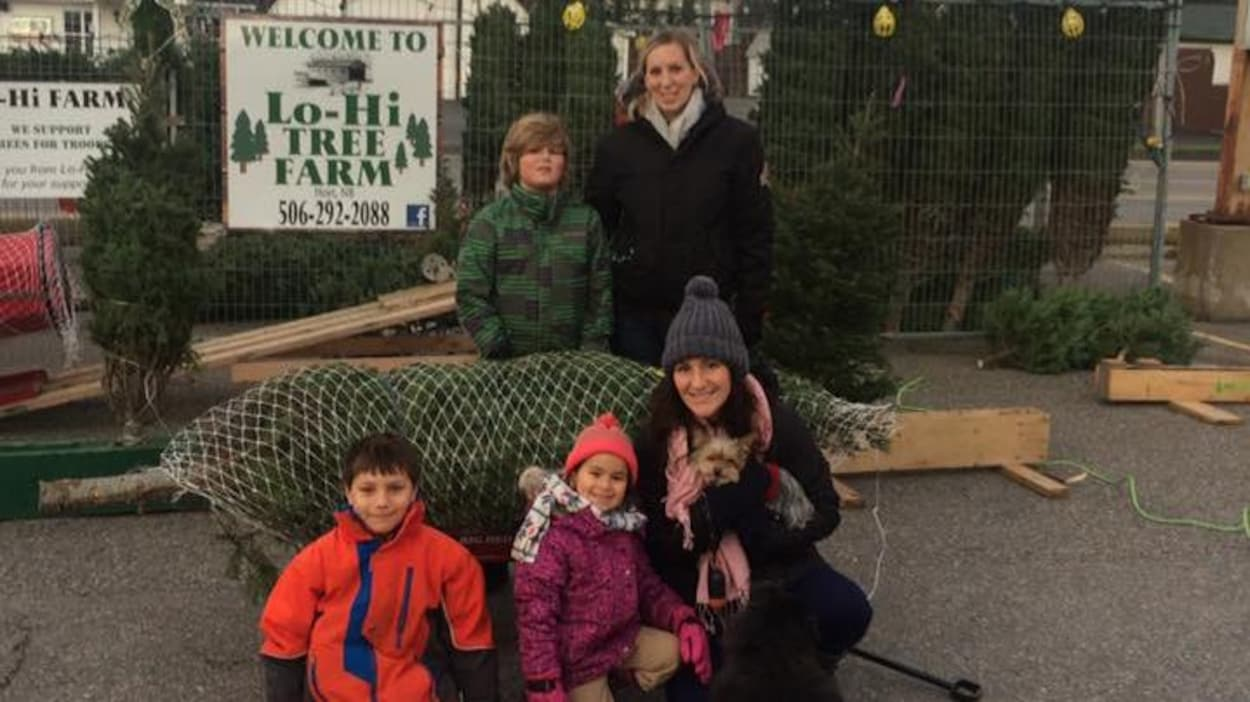 Une famille devant des sapins de Noël