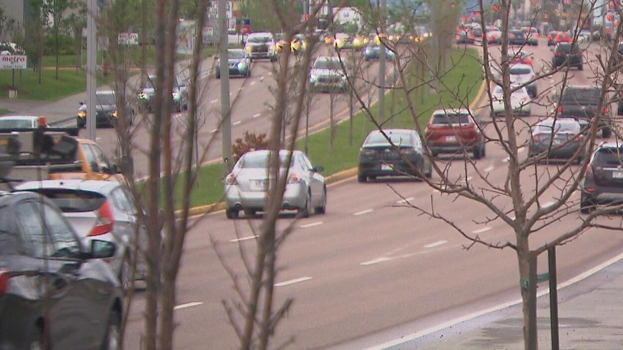 Des arbres dénudés se trouvent à côté et au centre du boulevard Talbot.