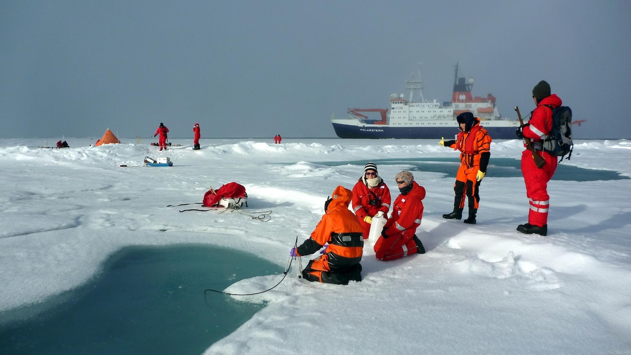 Des quantités record de microplastiques découvertes dans l'océan Arctique