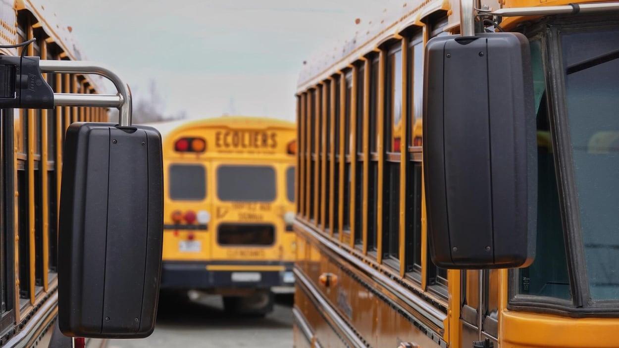 Des autobus scolaires.