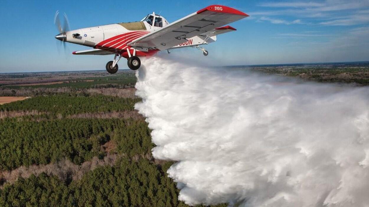 Un avion rouge et blanc dans le ciel qui jette de l'eau sur des arbres plus bas.