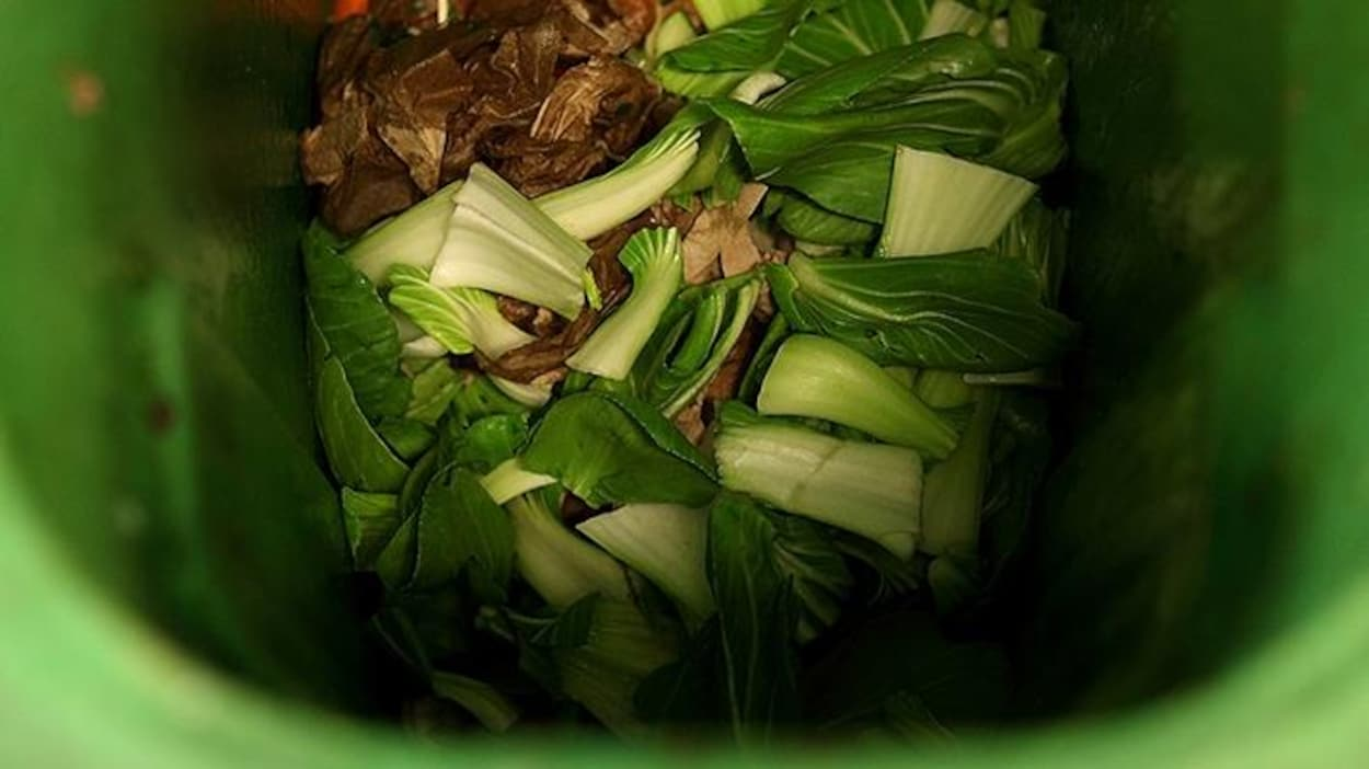 Des légumes dans un bac de compost
